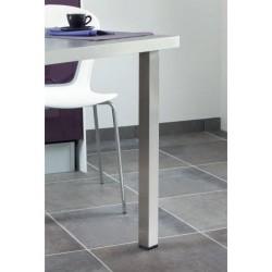 pied de table carre 50mm en inox aisi 304 accessoires de cuisines. Black Bedroom Furniture Sets. Home Design Ideas